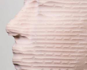Coleen – Planar Roughing, 2014